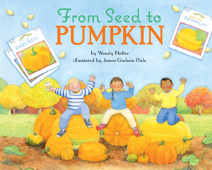 seed-to-pumpkin1